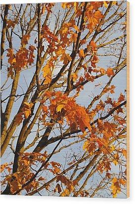 Autumn Orange Wood Print by Guy Ricketts