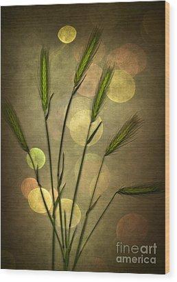 Autumn Party Wood Print by Jan Bickerton