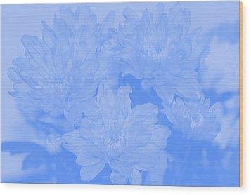 Baby Blue 2 Wood Print by Carol Lynch