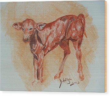 Baby Calf Wood Print by Deborah Gorga