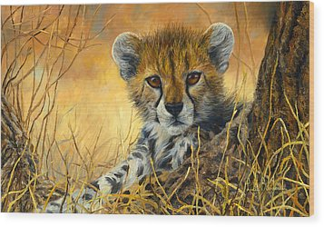 Baby Cheetah  Wood Print by Lucie Bilodeau