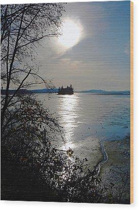 Baby Island Wood Print by Pamela Patch