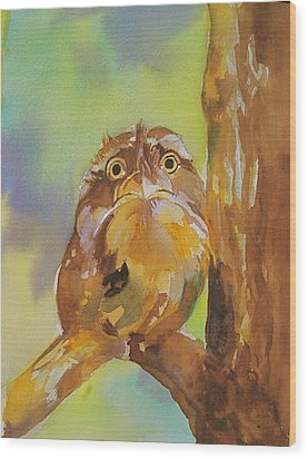 Baby Owl Wood Print by Reveille Kennedy
