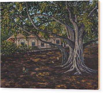 Banyan Tree Wood Print by Darice Machel McGuire