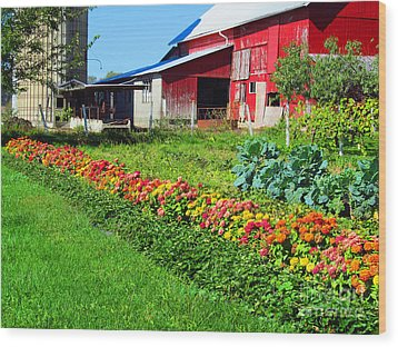Barn And Garden Wood Print by Tina M Wenger