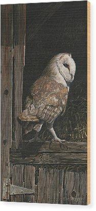 Barn Owl In The Old Barn Wood Print by Rob Dreyer AFC