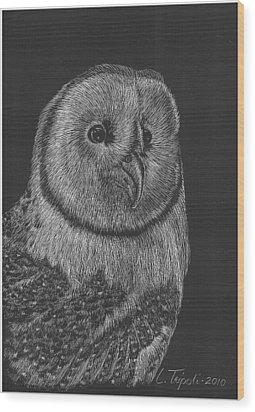 Barn Owl Wood Print by Lawrence Tripoli