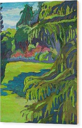 Beacon Hill Park Wood Print by Janet Ashworth
