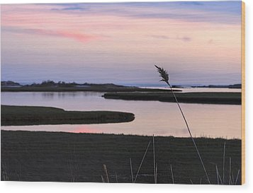 Beautiful Pink And Purple Sunset Over A New England Tidal Salt M Wood Print by Marianne Campolongo