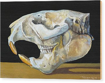 Beaver Skull 1 Wood Print by Catherine Twomey