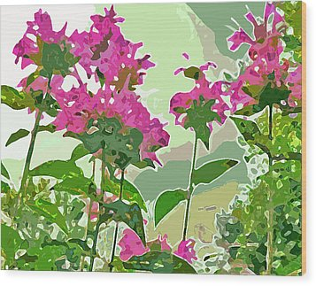 Bee Balm Wood Print by Jean Hall