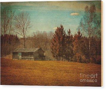 Behind The Village Wood Print by Jutta Maria Pusl