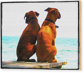 Best Friends Dog Photograph Fine Art Print Wood Print by Laura  Carter