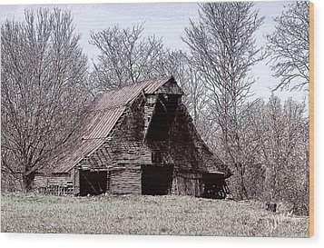 Better Days Wood Print by Bonnie Willis