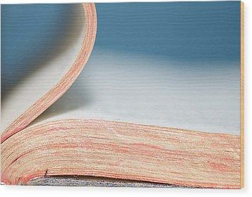 Bibliophile Wood Print by Lisa Knechtel