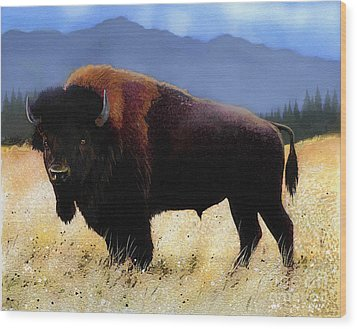 Big Bison Wood Print by Robert Foster