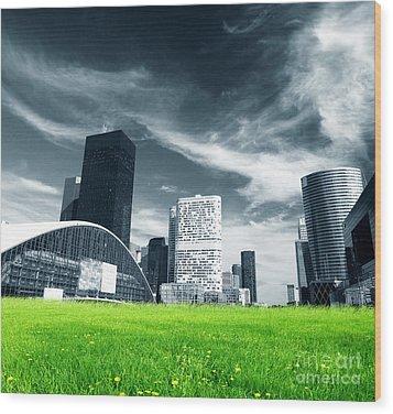 Big City And Green Fresh Meadow Wood Print by Michal Bednarek