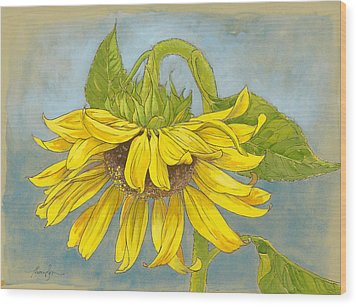 Big Sunflower Wood Print by Tracie Thompson