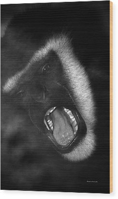 Big Yawn From This Monkey Wood Print by Thomas Woolworth