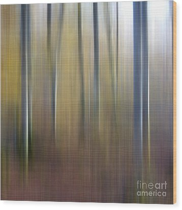 Birch Trees. Abstract. Blurred Wood Print by Bernard Jaubert