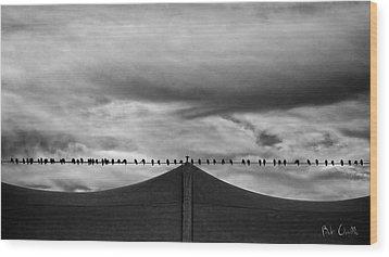 Birds Wood Print by Bob Orsillo
