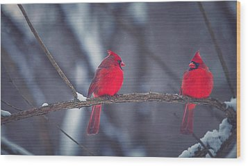 Birds Of A Feather Wood Print by Carrie Ann Grippo-Pike