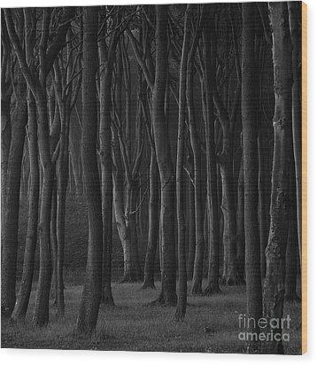 Black Forest Wood Print by Heiko Koehrer-Wagner