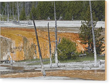 Black Sand Basin Therma Runoff Yellowstone Wood Print by Bruce Gourley