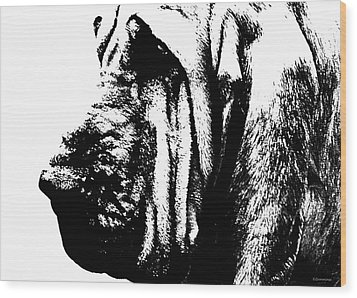 Bloodhound - It's Black And White - By Sharon Cummings Wood Print by Sharon Cummings