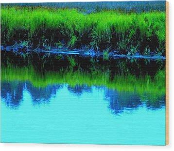 Blue Ashley Wood Print by Randall Weidner
