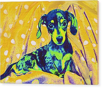 Blue Doxie Wood Print by Jane Schnetlage