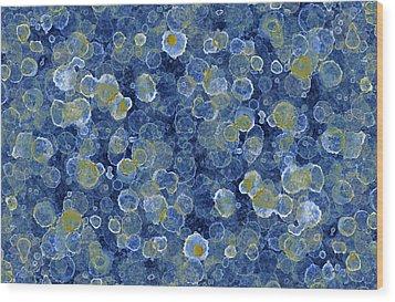 Blue Drip Wood Print by Frank Tschakert