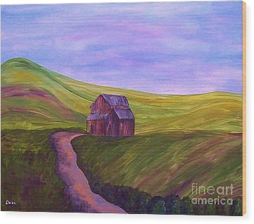 Blue Skies In The Hill Country Wood Print by Eloise Schneider