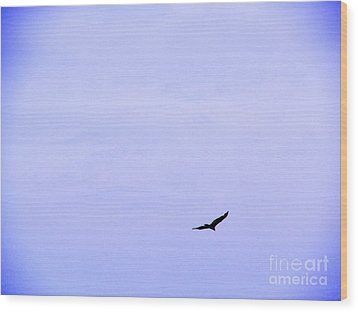 Blue Solo Flight Wood Print by Tina M Wenger