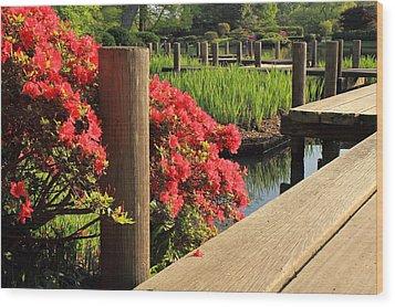 Boardwalk In Spring Wood Print by Scott Rackers