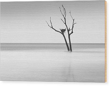 Boneyard Beach - II Wood Print by Ivo Kerssemakers