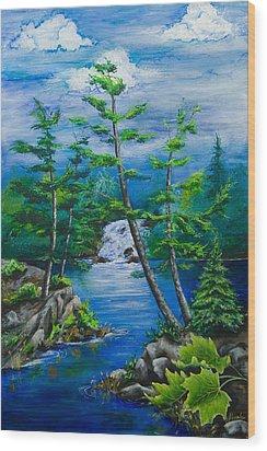 Bonnechere Falls Wood Print by Jill Alexander