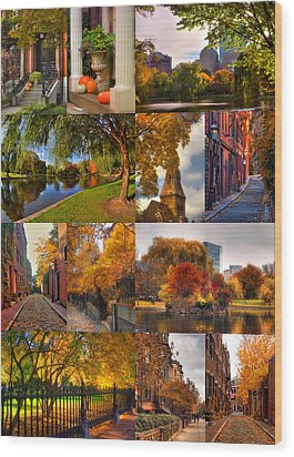 Boston Autumn Days Wood Print by Joann Vitali