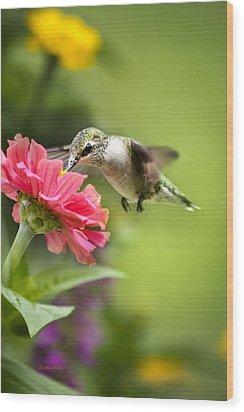Botanical Hummingbird Wood Print by Christina Rollo
