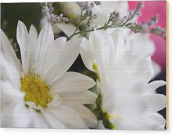 Bouquet Of Daisies Wood Print by John Holloway