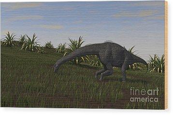Brachiosaurus Grazing In A Grassy Field Wood Print by Kostyantyn Ivanyshen