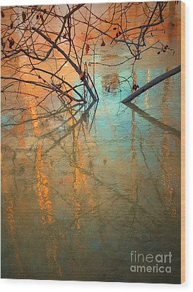 Branches And Ice Wood Print by Tara Turner