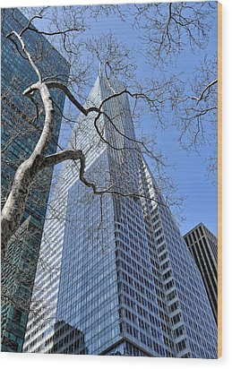 Branching Out Wood Print by Tony Ambrosio