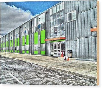 Brave New Elementary School Wood Print by MJ Olsen