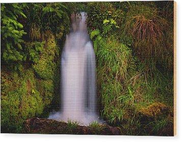 Bridal Dress. Waterfall At Benmore Botanical Garden. Nature Of Scotland Wood Print by Jenny Rainbow