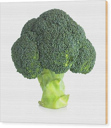 Broccoli Wood Print by Science Photo Library
