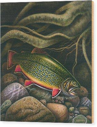 Brook Trout Lair Wood Print by JQ Licensing