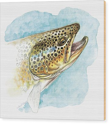 Brown Trout Study Wood Print by JQ Licensing