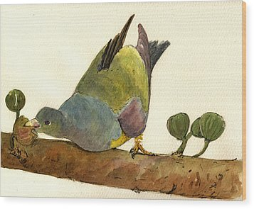 Bruce S Green Pigeon Wood Print by Juan  Bosco