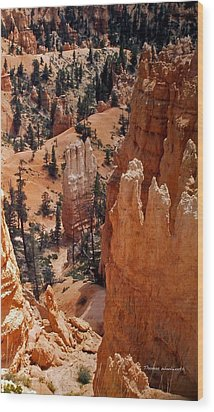 Bryce Canyon National Park 2 Wood Print by Thomas Woolworth